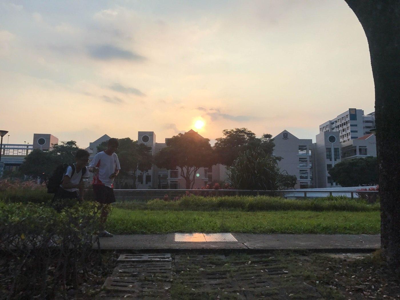SAJC sunset